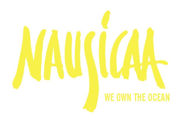 NAUSICAA YELLOW WE OWN